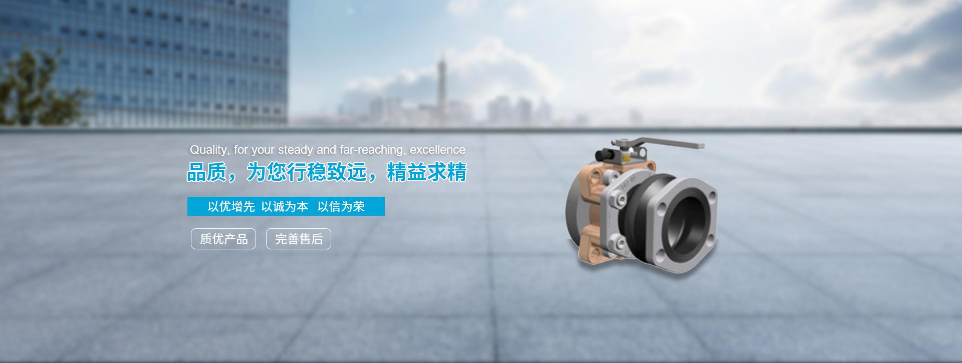 ASA液压泵